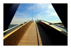 Lac du Der_0268 -1 (jeanmichelchristian) Tags: pont géométrie photo lac vacances passerelle