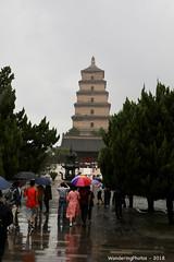 Umbrellas and the Great Wild Goose Pagoda - Xi'An Shaanxi China (WanderingPJB) Tags: flickruploaded umbrella