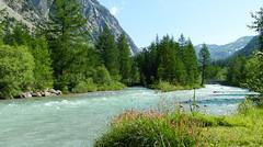 Un rêve de rivière..... (myvalleylil1) Tags: italie valferret rivière fleurs montagne vacances doradivalferret