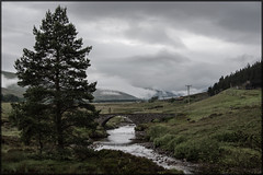 An improving breakfast outlook (jbg06003) Tags: class67 dbcargo ews caledonian sleeper scotrail scr hml highland