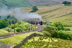 Cumbrian Mountain Express Greenholme Cumbria 13th July 2019 (loose_grip_99) Tags: shap greenholme tebay cumbria northwest england uk railway railroad train steam engine locomotive gradient incline mainline cumbrian mountain express lms stanier 5xp jubilee 460 45690 smoke transportation gassteam trains railways july 2019 wcml uksteam