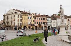 IMG_0014 (astrabetacygni) Tags: padova italia italy travel