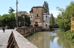IMG_0091 (astrabetacygni) Tags: padova italia italy travel