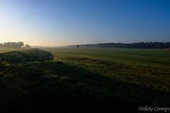 Get up early (Nelleke C) Tags: 2019 elbe laasche duitsland germany holiday landscape landschap spring sunrise vakantie voorjaar zonsopkomst