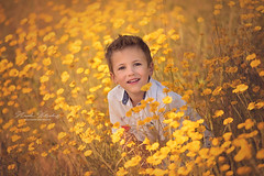 Roadside (nicolewitschass) Tags: boy boys brothers summer sun evening light flowers yellow magical cute sweet children child kids childrenphotography childrenphotographer momtogropher nikon d750 outdoors nature sunset golden smile family familyphotography heireloom portrait germany leonberg stuttgart nicolewitschass nicolewfotografie photographer sommer sonne blumen bluemenwiese fotograf