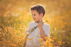 Flower Picking (nicolewitschass) Tags: boy boys brothers summer sun evening light flowers yellow magical cute sweet children child kids childrenphotography childrenphotographer momtogropher nikon d750 outdoors nature sunset golden smile family familyphotography heireloom portrait germany leonberg stuttgart nicolewitschass nicolewfotografie photographer sommer sonne blumen bluemenwiese fotograf