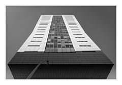 (Guillaume DELEBARRE) Tags: architecture canon lille noiretblanc blackandwhite bw monochrome frame building skyscraper gratteciel géométrie geometry symétrie symetry tamron 2470