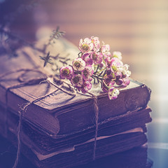 Old books (Ro Cafe) Tags: stilllife romantic vintage waxflowers books naturallight closeup nikkor105mmf28 sonya7iii