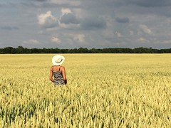 'Field of dreams' (Dave Soons) Tags: cirencester cotswolds