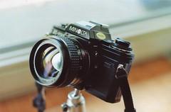 Minolta X-700 (iz.andre) Tags: minolta x300 x700 analog kodak gold iso 200 35mm film 50mm 117