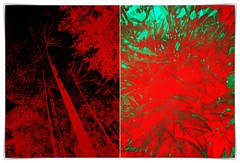 the infrared truth (kazimierz.pietruszewski) Tags: abstract form composition digipaint digitalart concept graphic colorful border diptych 21 red