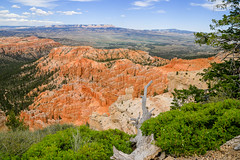Bryce Canyon - HDR- (Steve S. Yang) Tags: brycepoint trail hiking canon6d utah canyon nationalpark bryce