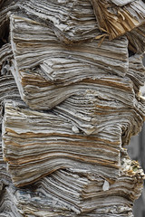 Pile of paper (me.behindthelens) Tags: smileonsaturday picofpaper paper rotterdam