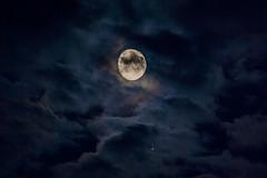 Moon vs. Jupiter / @ 300 mm / 2019-07-13 (astrofreak81) Tags: explore jupiter mond luna moon planet stars tree light night sky dark konjunktion konstellation dresden 20190713 astrofreak81 sylviomüller sylvio müller
