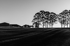 ...house on a hill... (Utopia_Seeker73) Tags: fuji x100f fujix100f blackandwhite blackandwhitephotography monochromaticphotography classic noirphoto blackandgrey blackwhite bnw bnwlife black white classicphotography creative monochrome fujifilm ilovesydney sydneybnw artistic artphoto composition fineart monochromatic art fujilens 35mmstreetphotography fujixseries 35mm