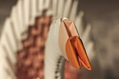 Origami Swan (Hans Lambregts) Tags: smileonsaturday picofpaper