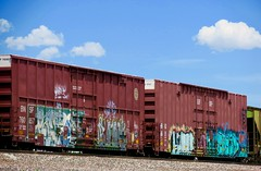 Been spending a lot of time down by the tracks (prairiegirrl) Tags: trains railroad railroadyards tracks rods rails boxcars graincars coalcars windturbinecars freight locomotive engine graffiti monikers artwork spraypaint wanderlust adventure contemplating catchingout hobo tramp