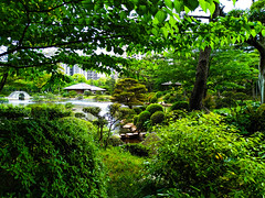 Shukkeien Garden (縮景園) in Hiroshima (shiruichua) Tags: japan hiroshima shukkeien garden 縮景園 scenery green leaves culture peaceful nature outdoors