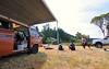 DSC_6649 (valvecovergasket) Tags: vanagon vw volkswagen camper van vanlife westfalia westy gowesty