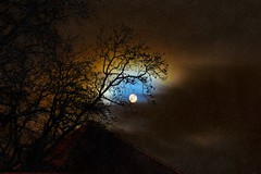 The a moon now ... (Julie Greg) Tags: moon sky colours colour nature nautre tree england kent abstract texture