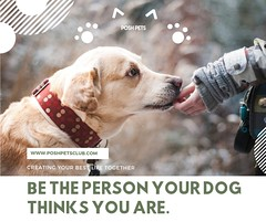 Be the person your dog thinks you are. (silvanagjergji) Tags: