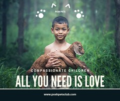 all you need is love (silvanagjergji) Tags: