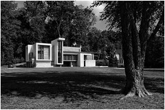 Cochise Drive   Contemporary Home & Property (steveartist) Tags: homes houses contemporaryarchitecture modernarchitecture landscape trees lawns forest car hills lightshade monochromaticimage sonydscwx220 snapseed 2019 photostevefrenkel
