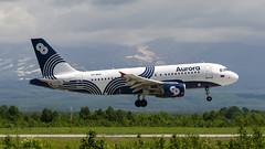 Aurora Airlines | Airbus A319 | VP-BWK (Zhuravlev Nikita) Tags: spotting elizovo kamchatka uhpp pkc airbus a319 319 aurora