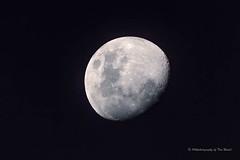 Man on the moon..... (Beckett_1066) Tags: redbank skies moon hawkesbury