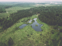 Forest lake (HenrikHansen) Tags: forest lake nature landscape drone drones dji mavic mavicpro denmark jutland jylland danmark padborg trees grass sky water flying flight