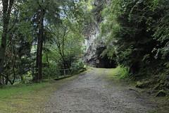 route des calèches Martigny-Chamonix (bulbocode909) Tags: valais suisse trient tunnels routes forêts arbres nature montagnes têtenoire vert routedescalèches
