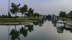 The Tagliamento (a7m2) Tags: italy tadliamento river lignano bibione adriaticsea landscape natur travel tourismus fauna flora naturschutz schotter flachwasser altholz kingofthealpenflues