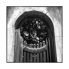 round door • vincennes, france • 2017 (lem's) Tags: round door porte arrondie ruin ruine urbex vincennes france rolleiflex t