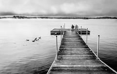 Morning on Stony Lake (Neil Cornwall) Tags: 2017 august canada kawarthalakes mountjulian ontario stonylake viamede summer