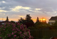 El sol se abre camino entre las nubes (eitb.eus) Tags: eitbcom 16599 g1 tiemponaturaleza tiempon2019 amanecer nafarroa ayegui josemariavega