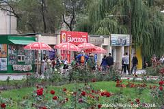 A cluster of red umbrellas - Bishkek Kyrgyzstan (WanderingPJB) Tags: flickruploaded umbrella kyrgyzstan kyrgyzrepublic kirghizia bishkek cluster square