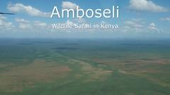"""Kilimanjaro Elephants"" - Amazing Wildlife Safari in Amboseli National Park Kenya 2018 (4K-Video) (Markus Trachsel) Tags: wildlife safari amboseli national park kenya animal bird"