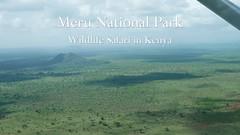 """The Special Northern Five Species""- Amazing Wildlife Safari in Meru National Park, Kenya 2018 (4K-Video) (Markus Trachsel) Tags: meru national park kenya wildlife safari animal bird africa"