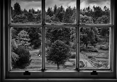 Project Sunday Week 28 Standard Lens B&W (JamesF1960) Tags: blackandwhite callendarhouse falkirk windowscene bw projectsunday week28