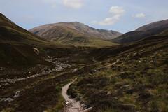 Up Glen Lui (steve_whitmarsh) Tags: aberdeenshire scotland scottishhighlands highlands landscape mountain hills path topic abigfave rockpaper