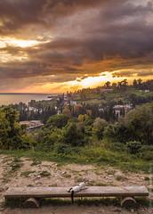 Новоафонский-монастырь-New-Athos-Monastery-Abkhazia-mavic-0974