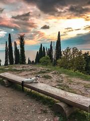 Новоафонский-монастырь-New-Athos-Monastery-Abkhazia-7885