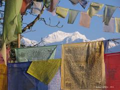 Prayer Flags - Pemayangtse Monastery Sikkim India (WanderingPJB) Tags: india sikkim himalayas foothills pemayangtsemonastery buddhism prayerflags