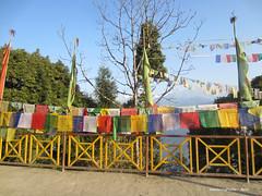 Prayer Flags & Fence - Pemayangtse Monastery Pelling Sikkim India (WanderingPJB) Tags: india sikkim himalayas foothills pemayangtsemonastery buddhism prayerflags fence pelling