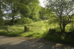 Gateway (Tony Tooth) Tags: nikon d600 tamron 2470mm sunny evening gate gateway sunlight road countryside rural newtown staffs staffordshire england