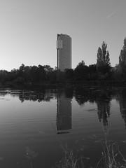 Alte_Donau_08 (rhomboederrippel) Tags: rhomboederrippel fujifilm xe1 april 2019 europe austria vienna altedonau clearsky sunset skyscraper floridotower mühlschüttel bw monochrome