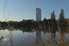 Alte_Donau_09 (rhomboederrippel) Tags: rhomboederrippel fujifilm xe1 april 2019 europe austria vienna altedonau clearsky sunset tree water skyscraper floridotower mühlschüttel