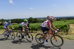 10810328-032 (Lotto Soudal Cycling Team) Tags: cycling cyclisme etape france frankrijk letour letourdefrance protour race rit road ronde rondevanfrankrijk route sport stage tdf tdf2019 tour uci wegrit wielerwedstrijd wielrennen worldtour nicovereecken 2019 saintetienne