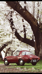 Toyota Sports 800 (at1503) Tags: blossom japan spring leaves trees branches grass portrait red white bright classiccar oldcar sportscar toyota sports800 toyotas800 reflections backgroundblur wheels smallcar japanesecar gtsport granturismo granturismosport motorsport racing game gaming ps4 car