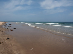 back to bamburgh (Johnson Cameraface) Tags: 2019 june summer olympus omde1 em1 micro43 mzuiko 1240mm f28 johnsoncameraface bamburgh beach sea northumberland holiday